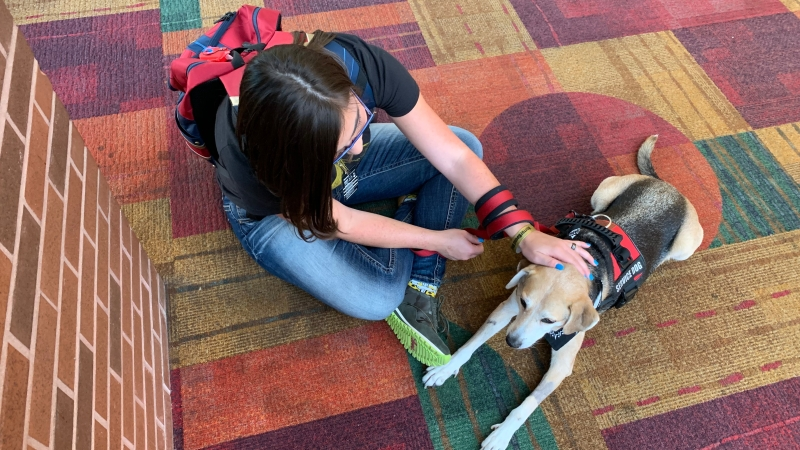 Me sitting in the floor with my service dog, Daisy.